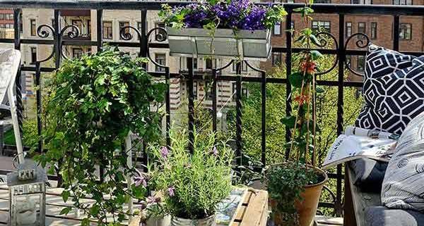 5Small-Balcony-Garden-ideas-5