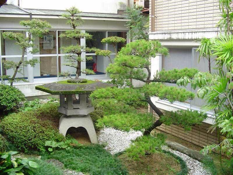 สวนหิน5