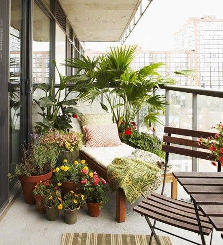 30-city-gardens-that-have-us-green-with-envy-urban-garden-ideas-balcony-filled-with-plants-5723be5ea45f30b81220d2a7-w620_h800